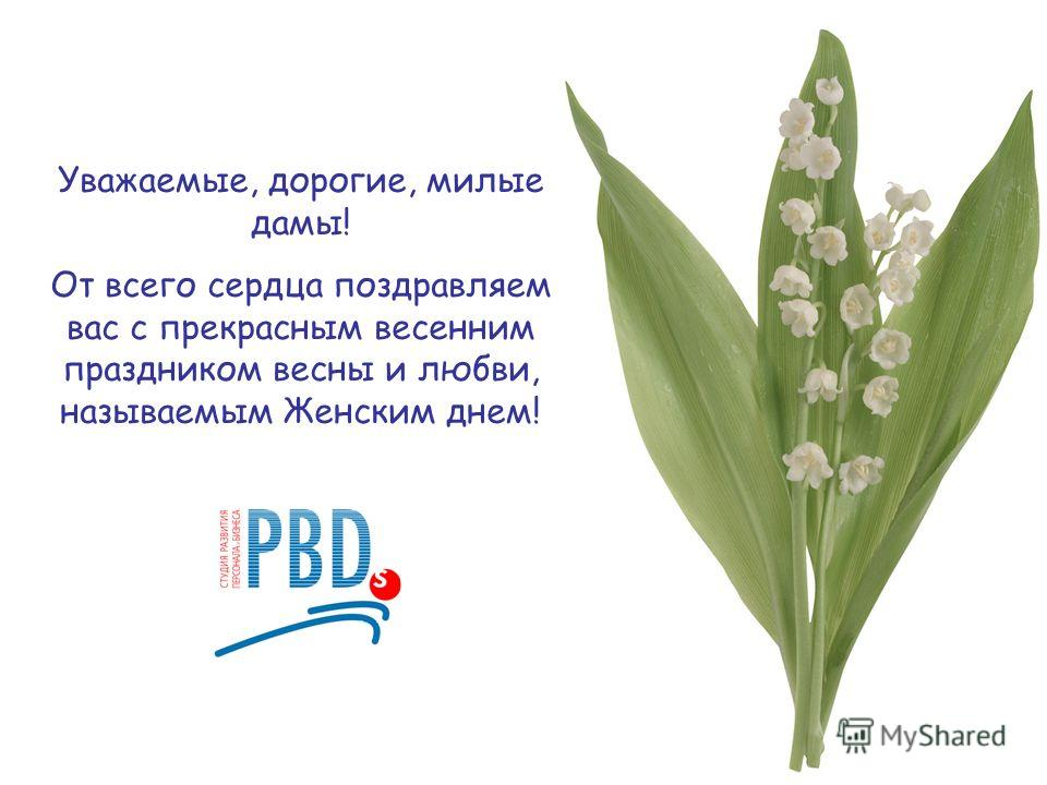 Уважаемые, дорогие, милые дамы! От всего сердца поздравляем вас с прекрасным весенним праздником весны и любви, называемым Женским днем!