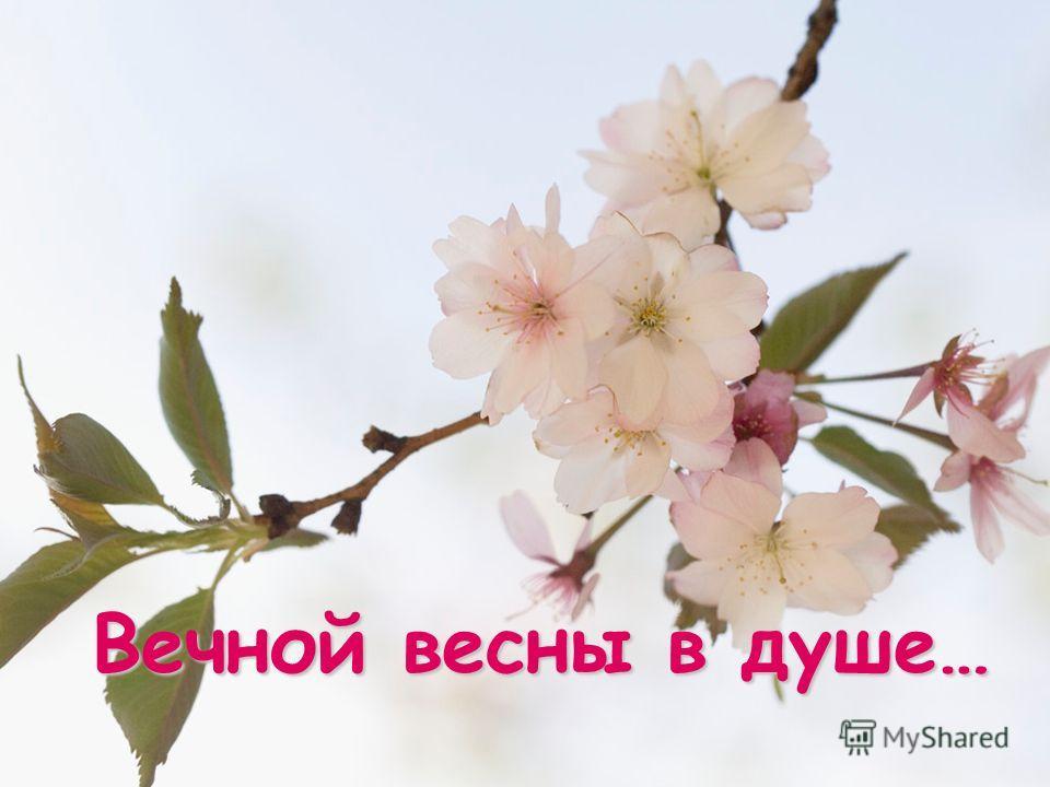 Вечной весны в душе…