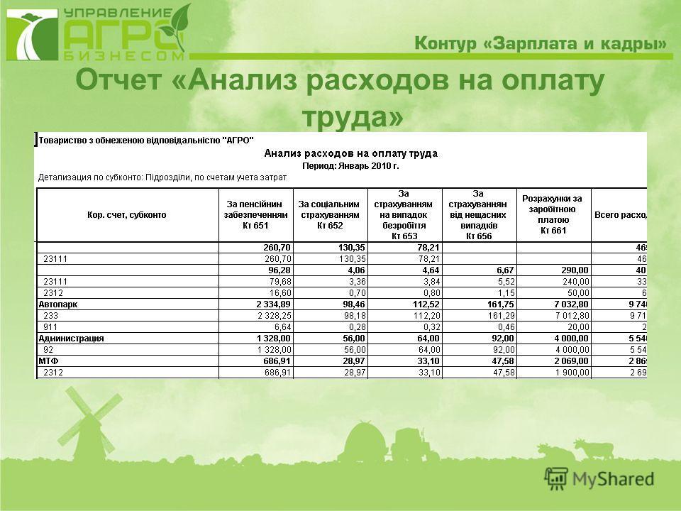 Отчет «Анализ расходов на оплату труда»