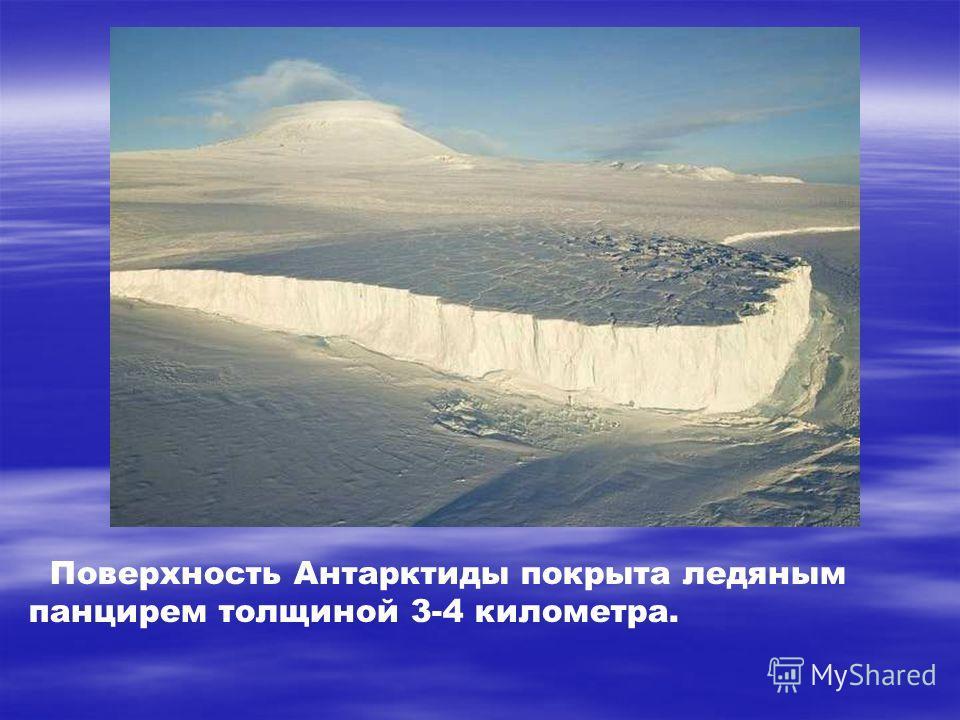 Поверхность Антарктиды покрыта ледяным панцирем толщиной 3-4 километра. Поверхность антарктиды покрыта ледяным панцирем толщиной 3-4 километра. Можешь представить себе такие горы льда?