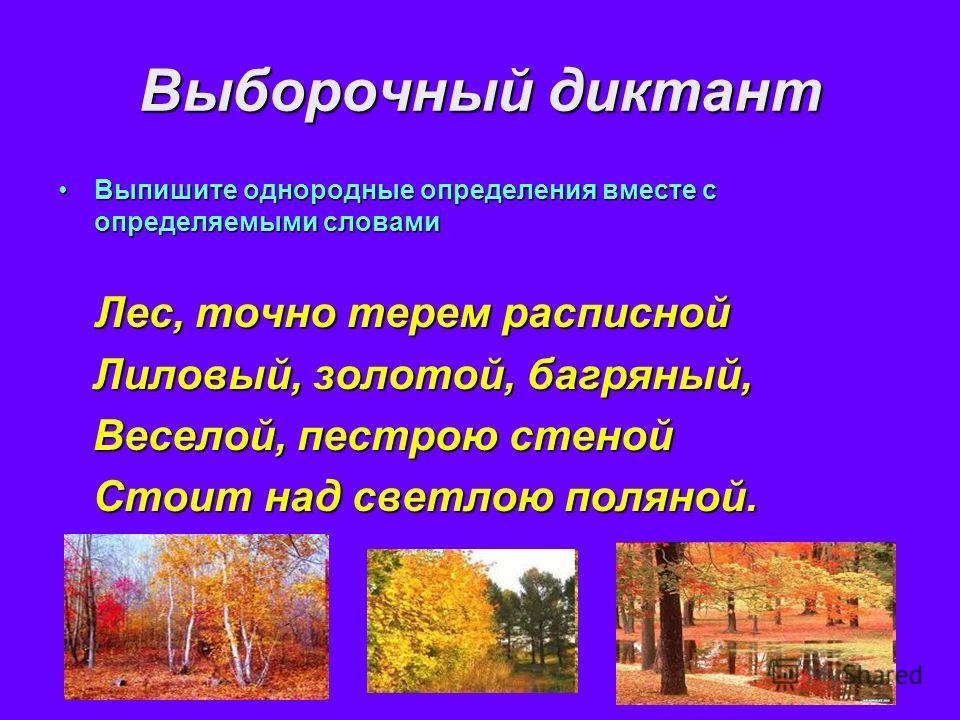 Выборочный диктант Выпишите однородные определения вместе с определяемыми словамиВыпишите однородные определения вместе с определяемыми словами Лес, точно терем расписной Лес, точно терем расписной Лиловый, золотой, багряный, Лиловый, золотой, багрян