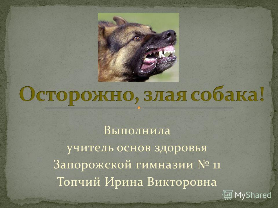 Выполнила учитель основ здоровья Запорожской гимназии 11 Топчий Ирина Викторовна