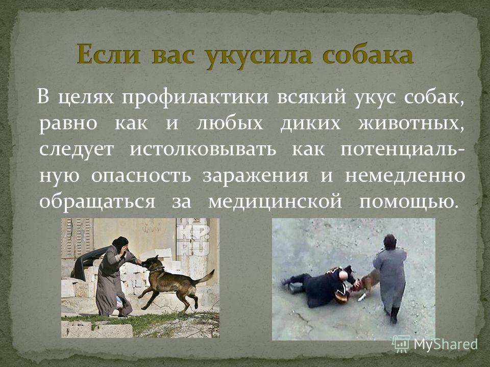 В целях профилактики всякий укус собак, равно как и любых диких животных, следует истолковывать как потенциаль- ную опасность заражения и немедленно обращаться за медицинской помощью.