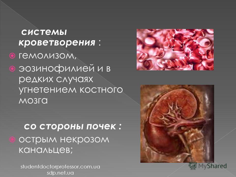 системы кроветворения : гемолизом, эозинофилией и в редких случаях угнетением костного мозга со стороны почек : острым некрозом канальцев; studentdoctorprofessor.com.ua sdp.net.ua