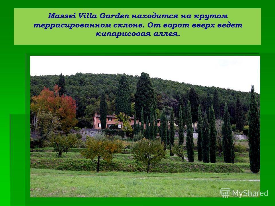 Massei Villa Garden находится на крутом террасированном склоне. От ворот вверх ведет кипарисовая аллея.