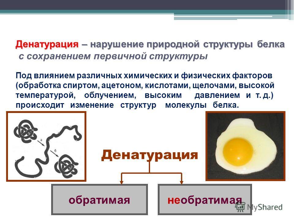 Денатурация – нарушение природной структуры белка с сохранением первичной структуры Денатурация Под влиянием различных химических и физических факторов (обработка спиртом, ацетоном, кислотами, щелочами, высокой температурой, облучением, высоким давле