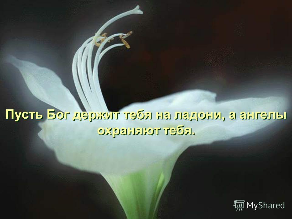 Пусть Бог держит тебя на ладони, а ангелы охраняют тебя.