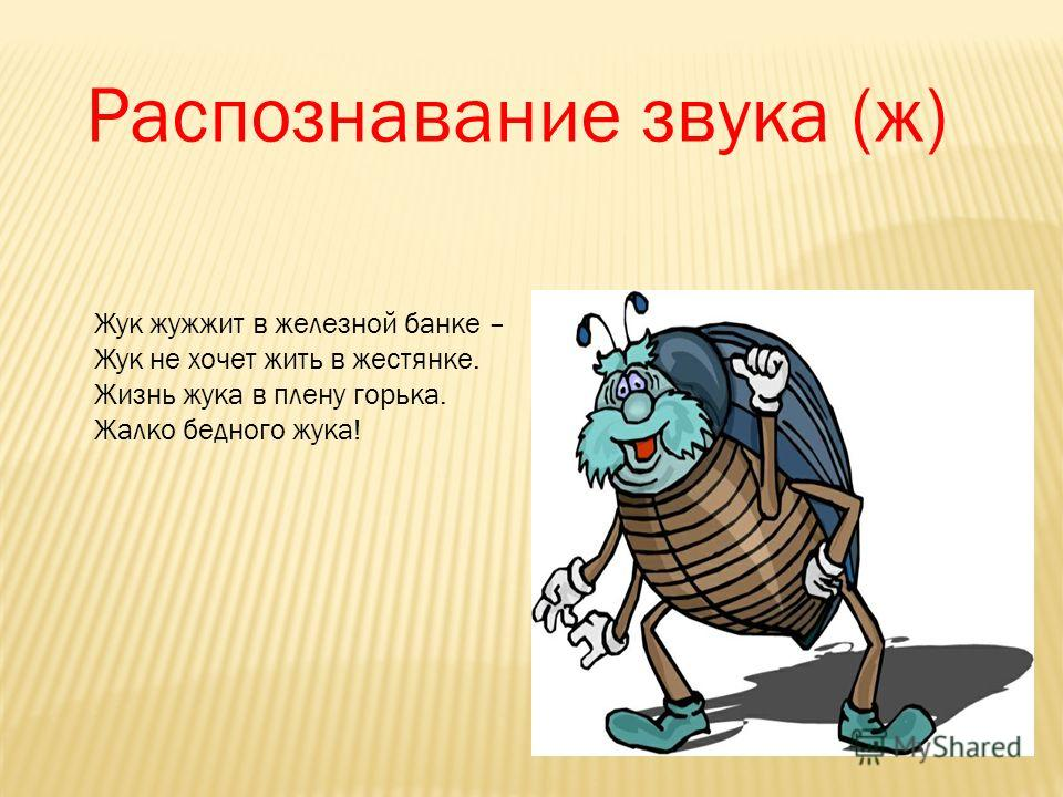 Распознавание звука (ж) Жук жужжит в железной банке – Жук не хочет жить в жестянке. Жизнь жука в плену горька. Жалко бедного жука!