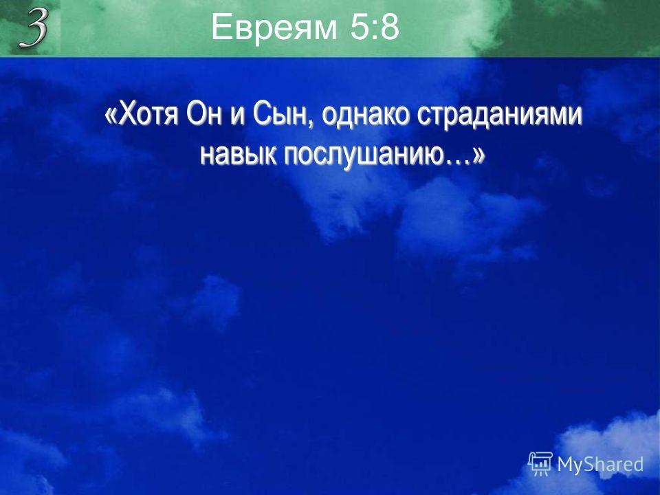 Евреям 5:8 «Хотя Он и Сын, однако страданиями навык послушанию…»