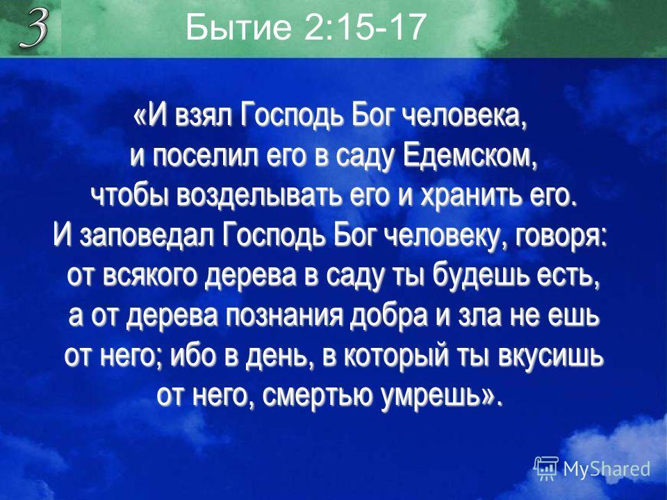 Бытие 2:15-17 «И взял Господь Бог человека, и поселил его в саду Едемском, и поселил его в саду Едемском, чтобы возделывать его и хранить его. чтобы возделывать его и хранить его. И заповедал Господь Бог человеку, говоря: от всякого дерева в саду ты