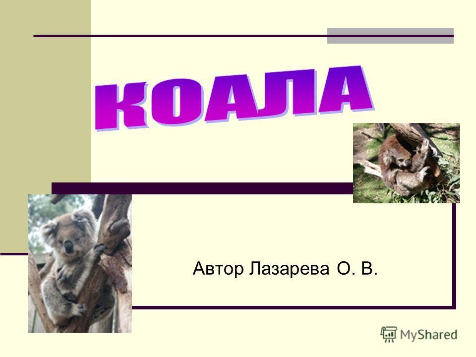 Автор Лазарева О. В.