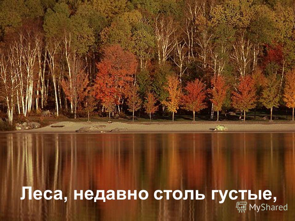 Леса, недавно столь густые,