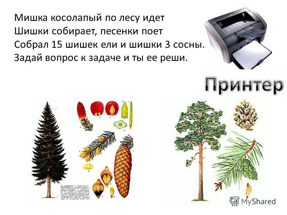 Мишка косолапый по лесу идет Шишки собирает, песенки поет Собрал 15 шишек ели и шишки 3 сосны. Задай вопрос к задаче и ты ее реши.