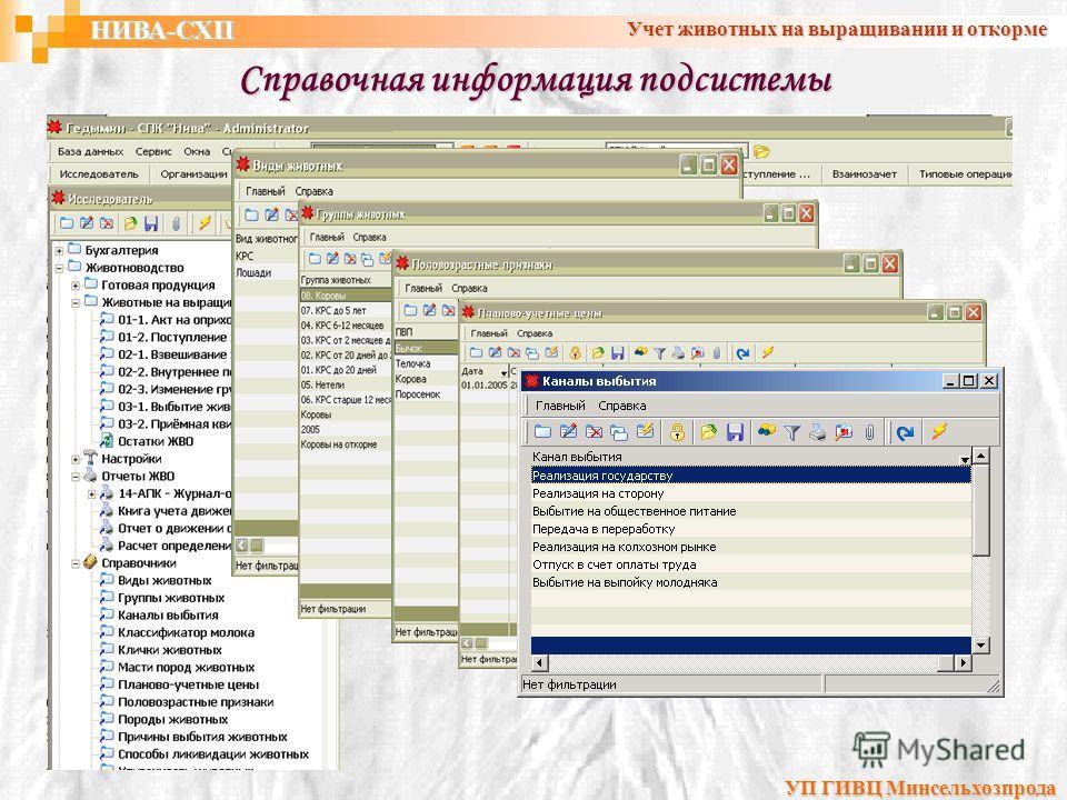 Справочная информация подсистемы НИВА-СХП Учет животных на выращивании и откорме УП ГИВЦ Минсельхозпрода