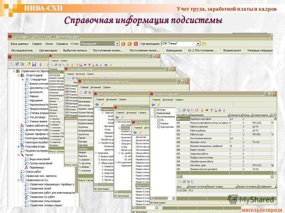 Справочная информация подсистемы УП ГИВЦ Минсельхозпрода НИВА-СХП Учет труда, заработной платы и кадров