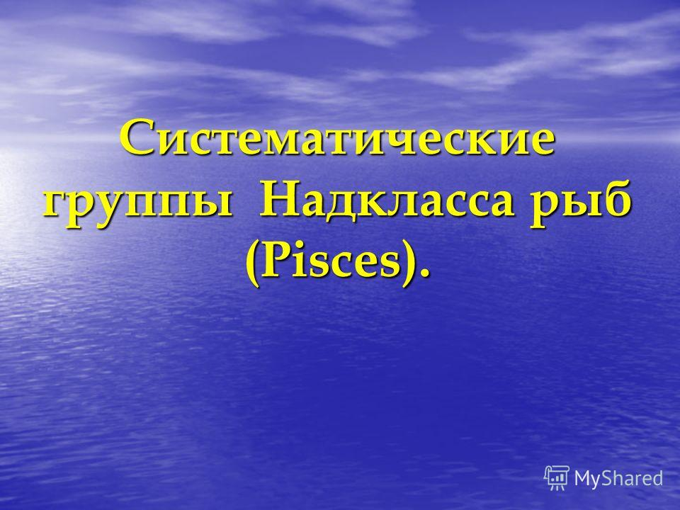 Систематические группы Надкласса рыб (Pisces).