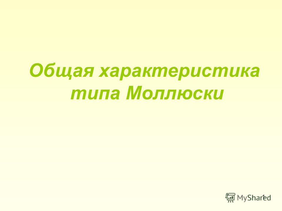 Общая характеристика типа Моллюски 1