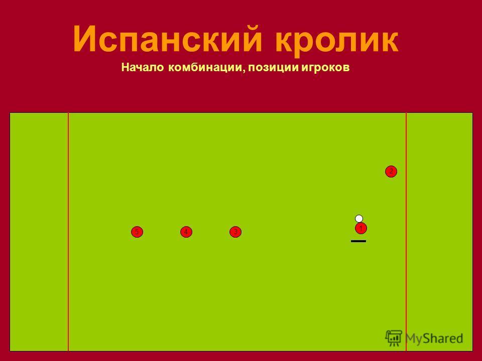 1 35 2 4 Испанский кролик Начало комбинации, позиции игроков