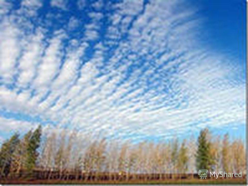 Перьевые (перистые облака) состоят из отдельных тонких белых нитей Наблюдаются чаще на высоте 6-18 км, медленно дрейфуют и напоминают огромное перо.
