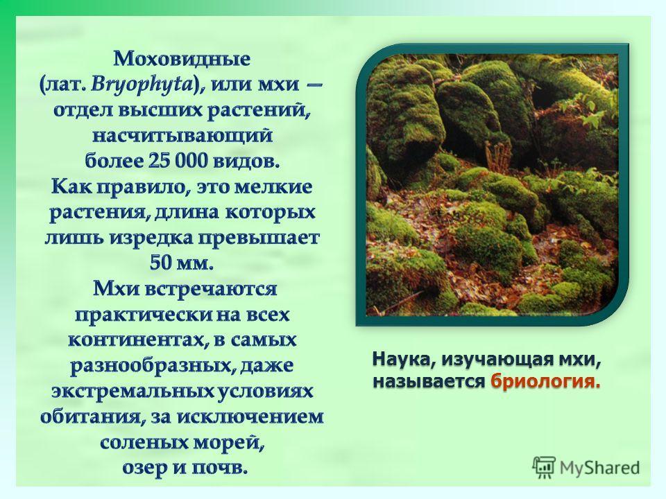 Наука, изучающая мхи, называется бриология.