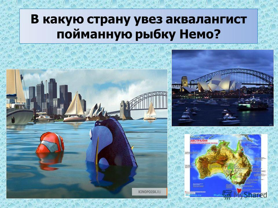 В какую страну увез аквалангист пойманную рыбку Немо?