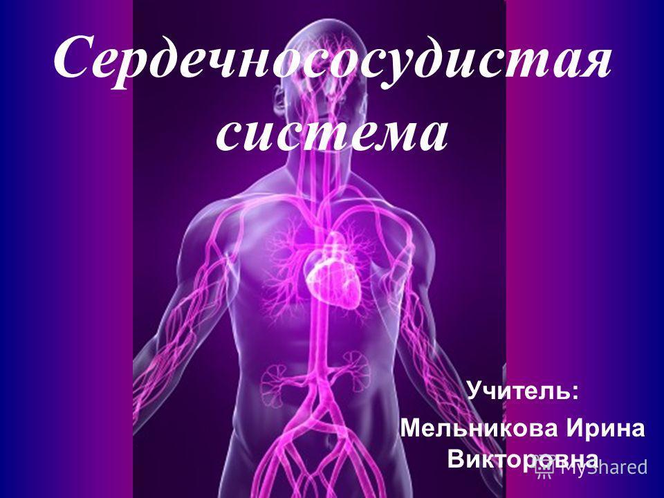 Сердечнососудистая система Учитель: Мельникова Ирина Викторовна