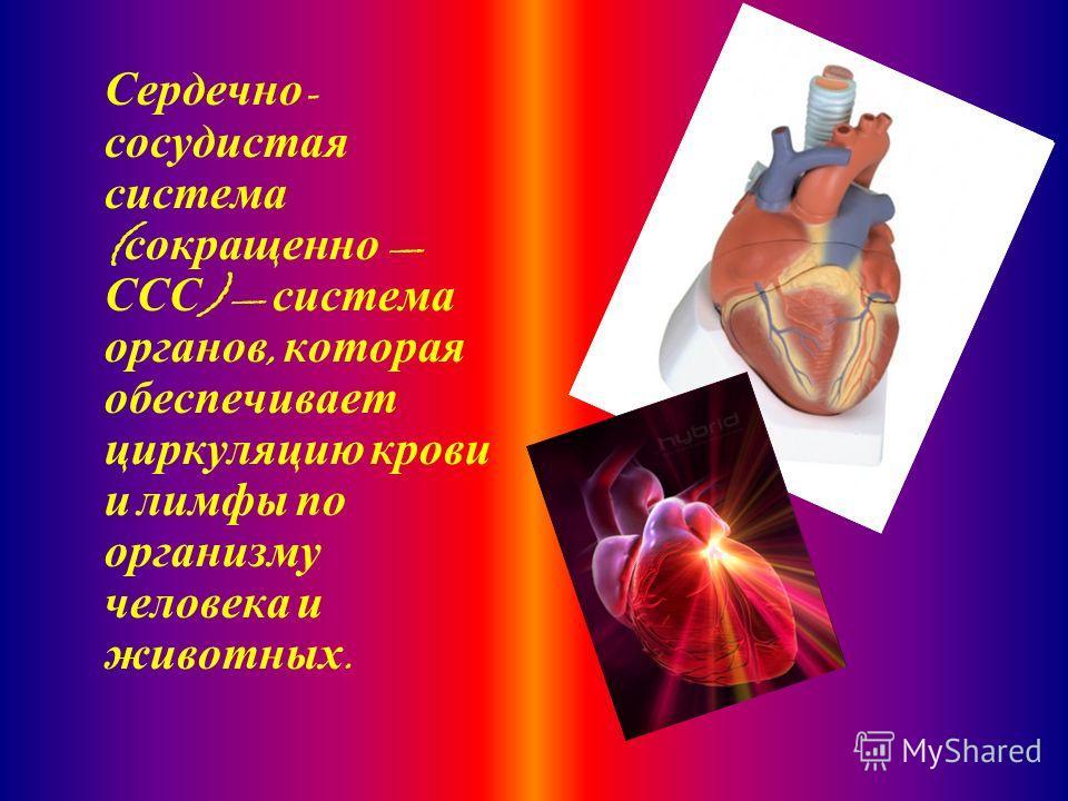 Сердечно - сосудистая система ( сокращенно ССС ) система органов, которая обеспечивает циркуляцию крови и лимфы по организму человека и животных.