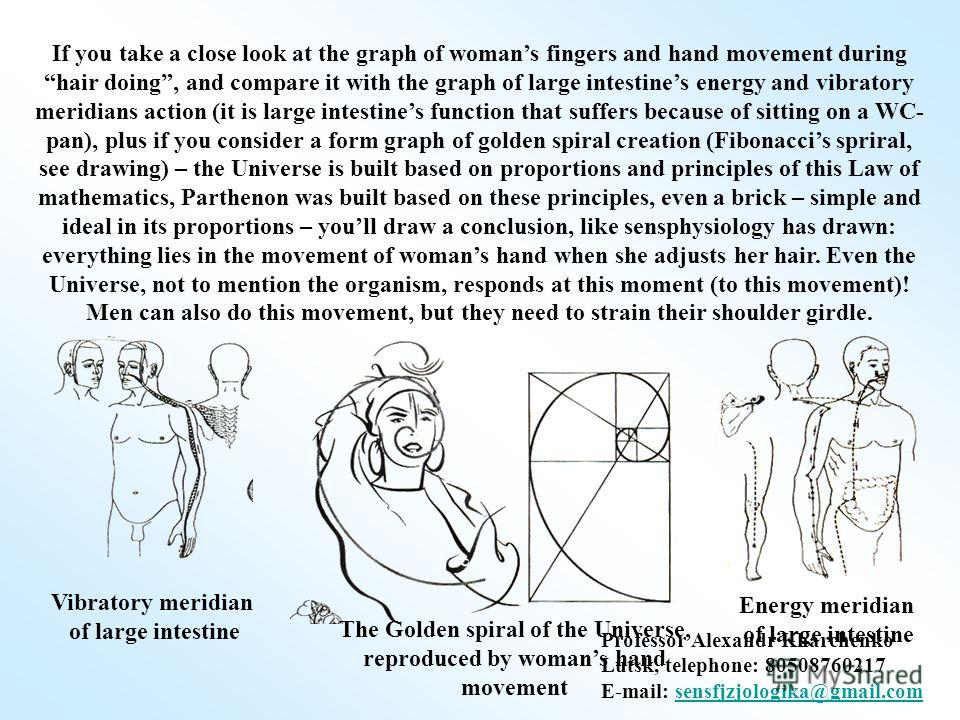 If you take a close look at the graph of womans fingers and hand movement during hair doing, and compare it with the graph of large intestines energy and vibratory meridians action (it is large intestines function that suffers because of sitting on a
