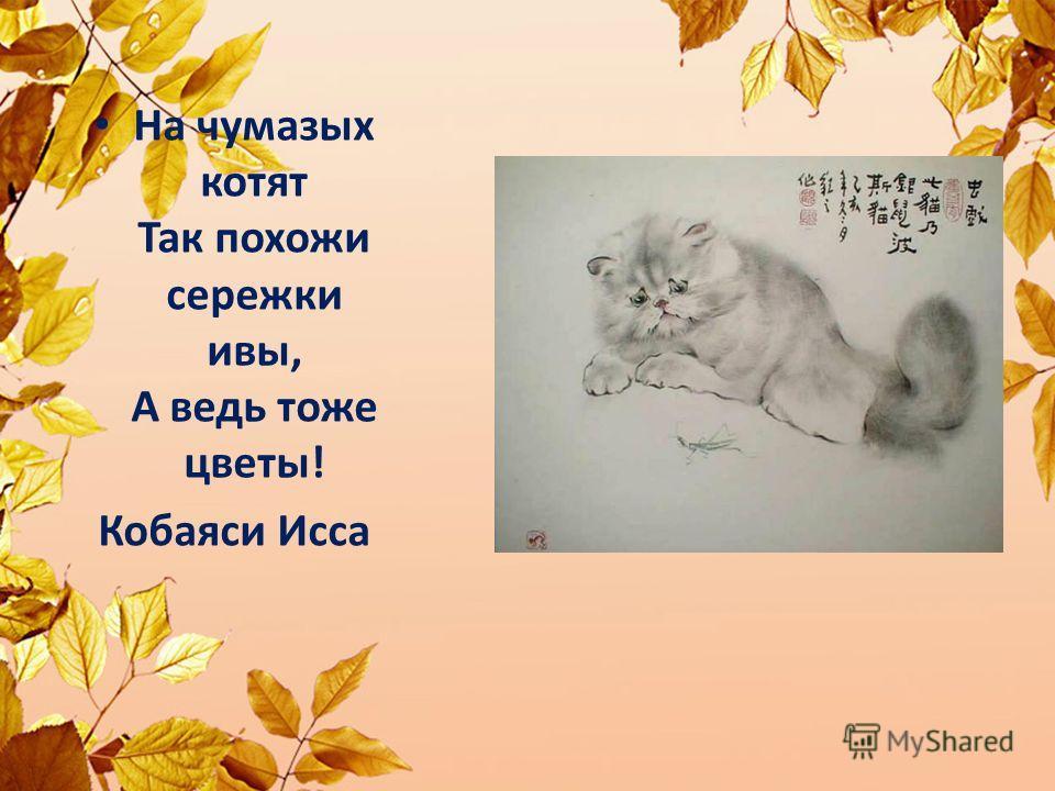 На чумазых котят Так похожи сережки ивы, А ведь тоже цветы! Кобаяси Исса