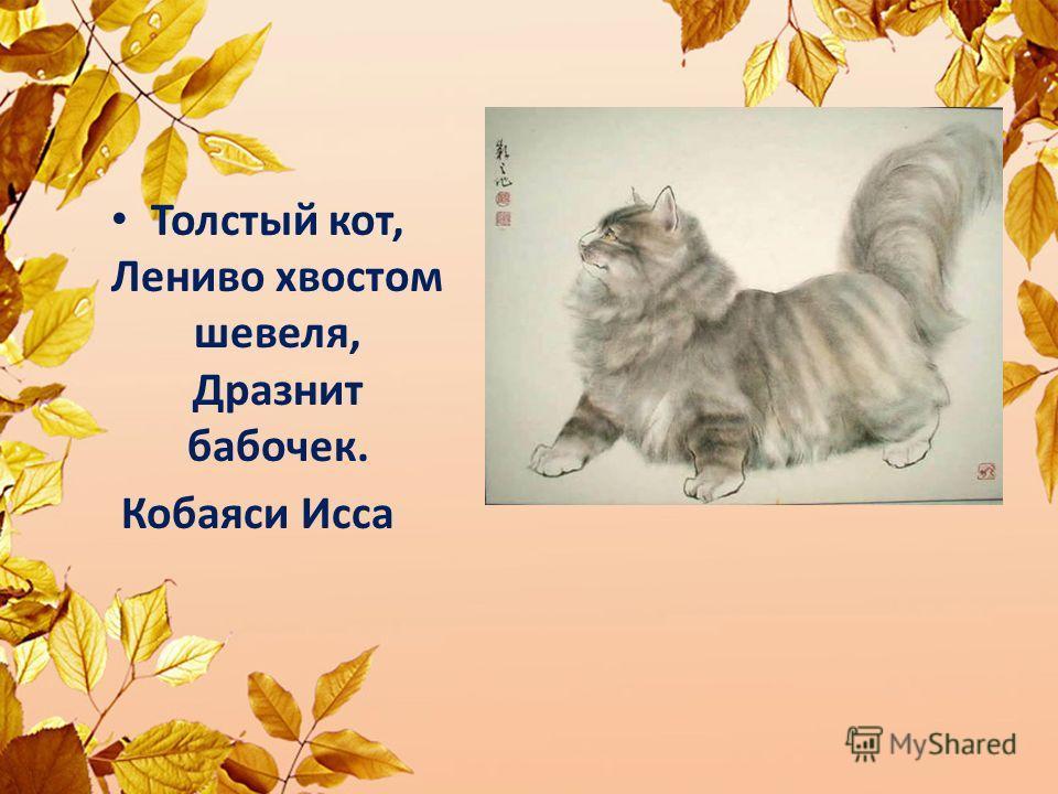 Толстый кот, Лениво хвостом шевеля, Дразнит бабочек. Кобаяси Исса