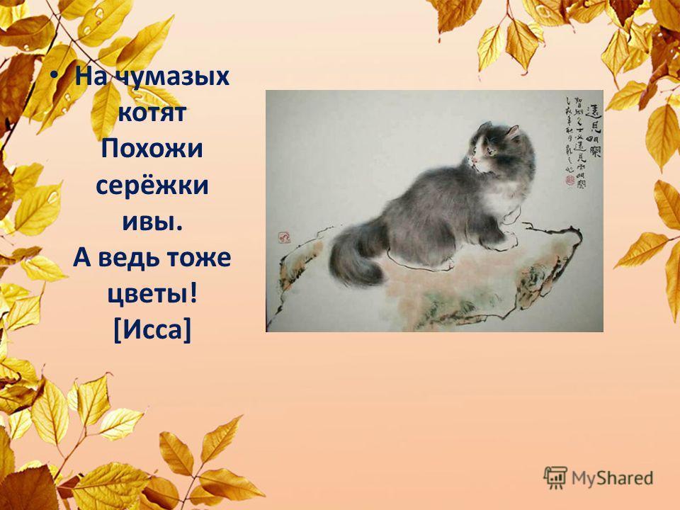 Hа чyмазых котят Похожи сеpёжки ивы. А ведь тоже цветы! [Исса]