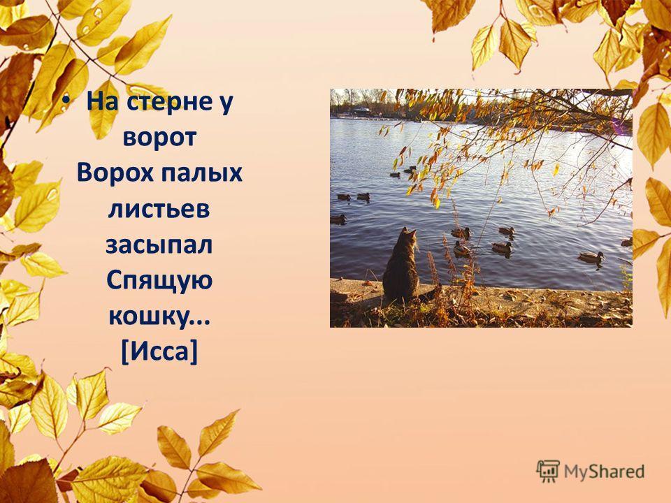 Hа стеpне y воpот Воpох палых листьев засыпал Спящyю кошкy... [Исса]