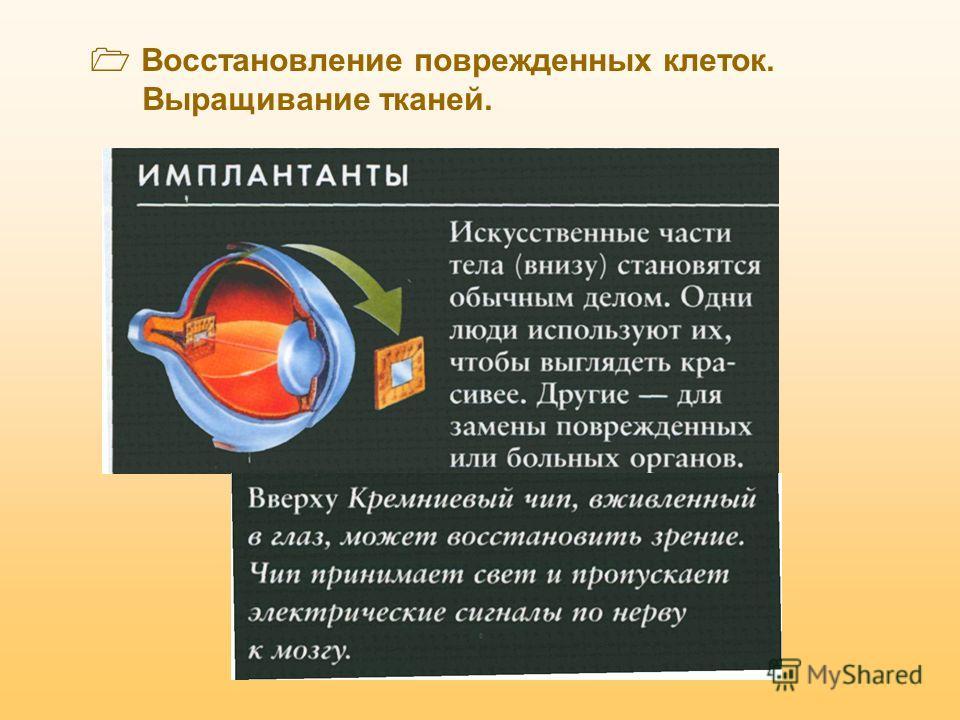 Значение эмбриологических знаний для человека Искусственное оплодотворение