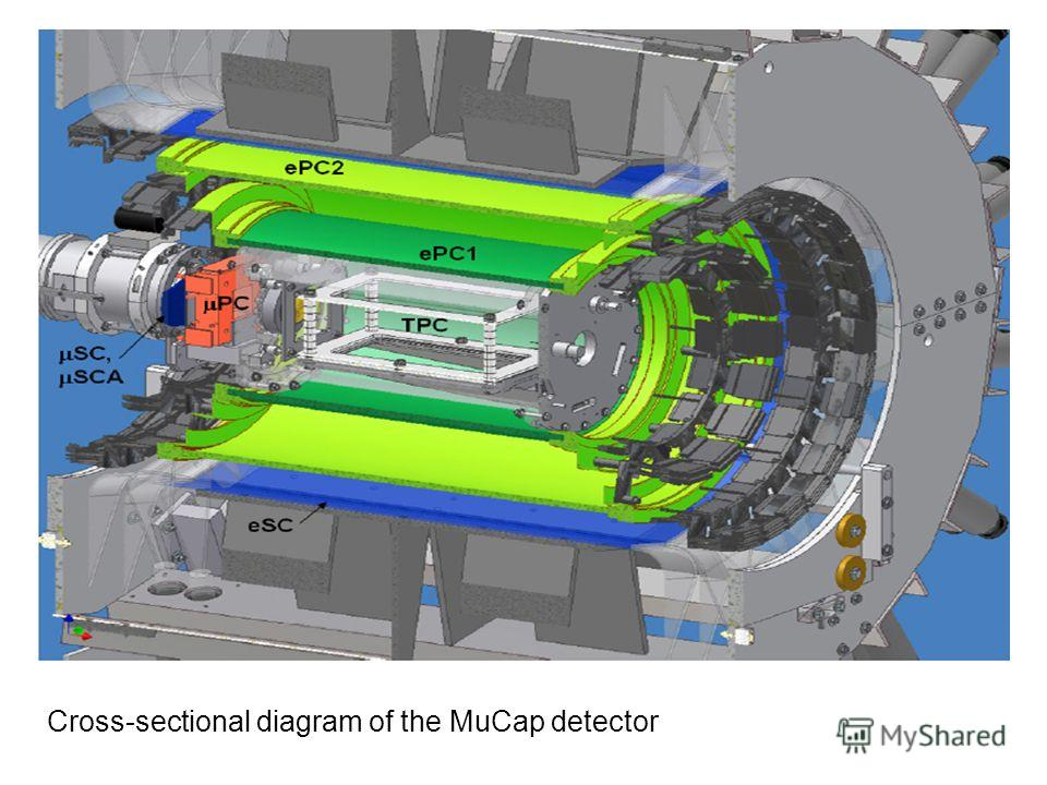 Cross-sectional diagram of the MuCap detector