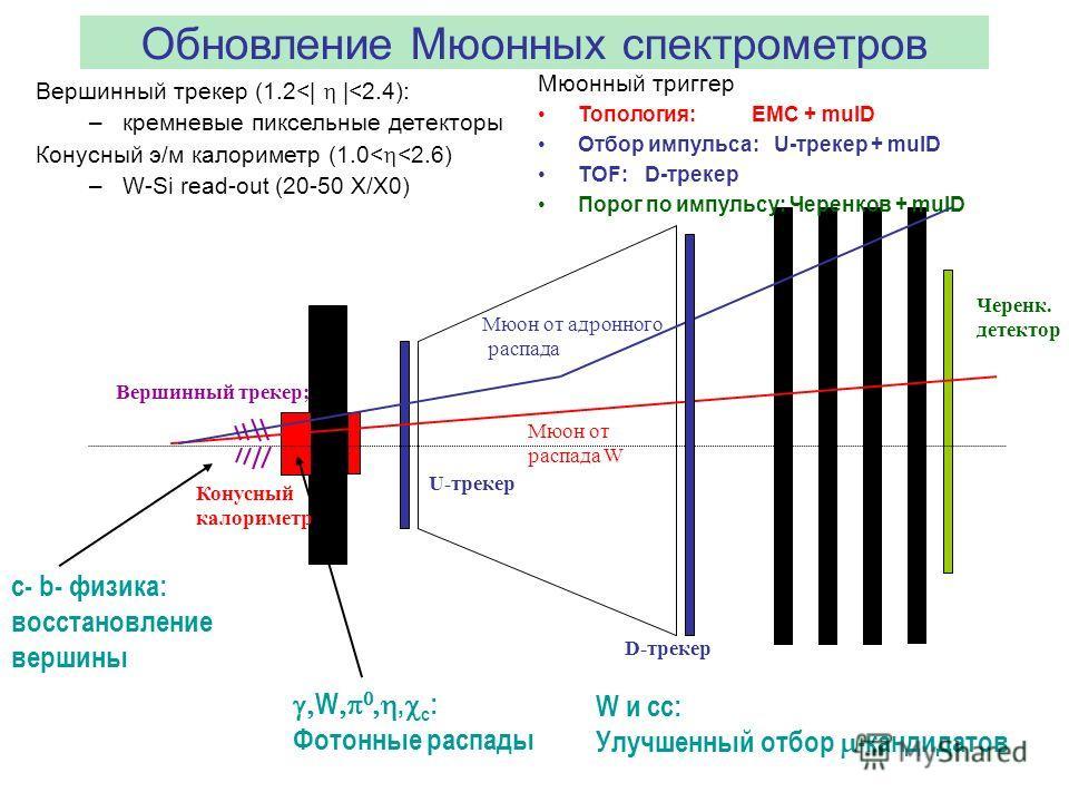 Обновление Мюонных спектрометров Вершинный трекер (1.2