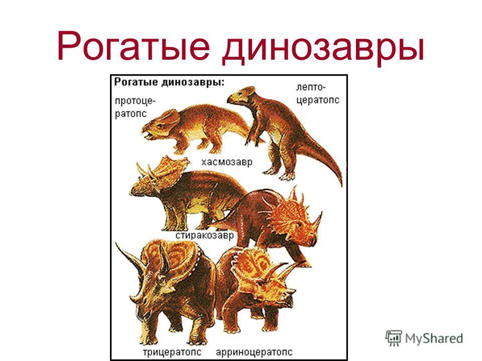 Рогатые динозавры