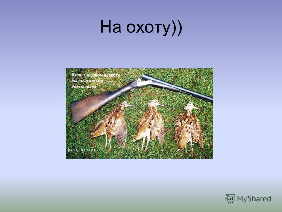 На охоту))