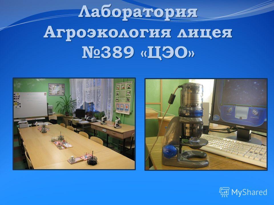 Лаборатория Агроэкология лицея 389 «ЦЭО»