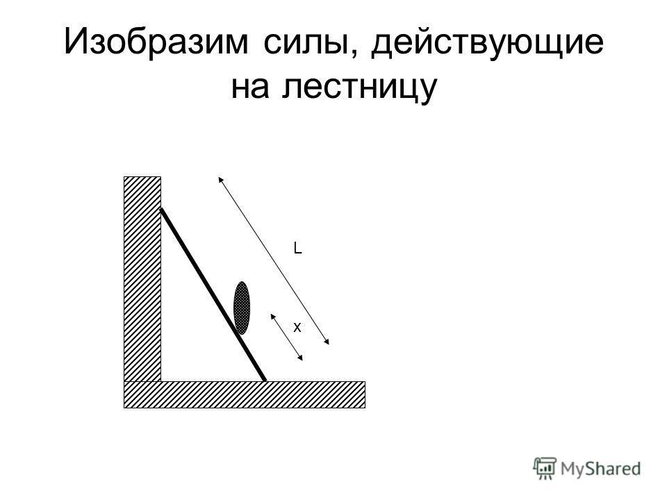 Изобразим силы, действующие на лестницу L x