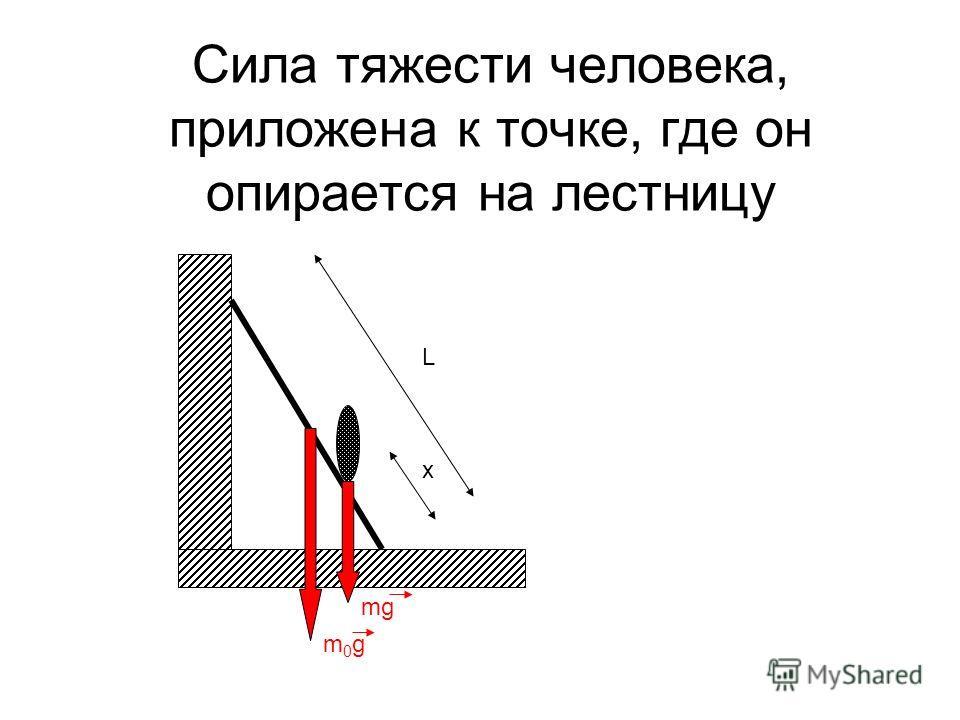 Сила тяжести человека, приложена к точке, где он опирается на лестницу L x m0gm0g mg