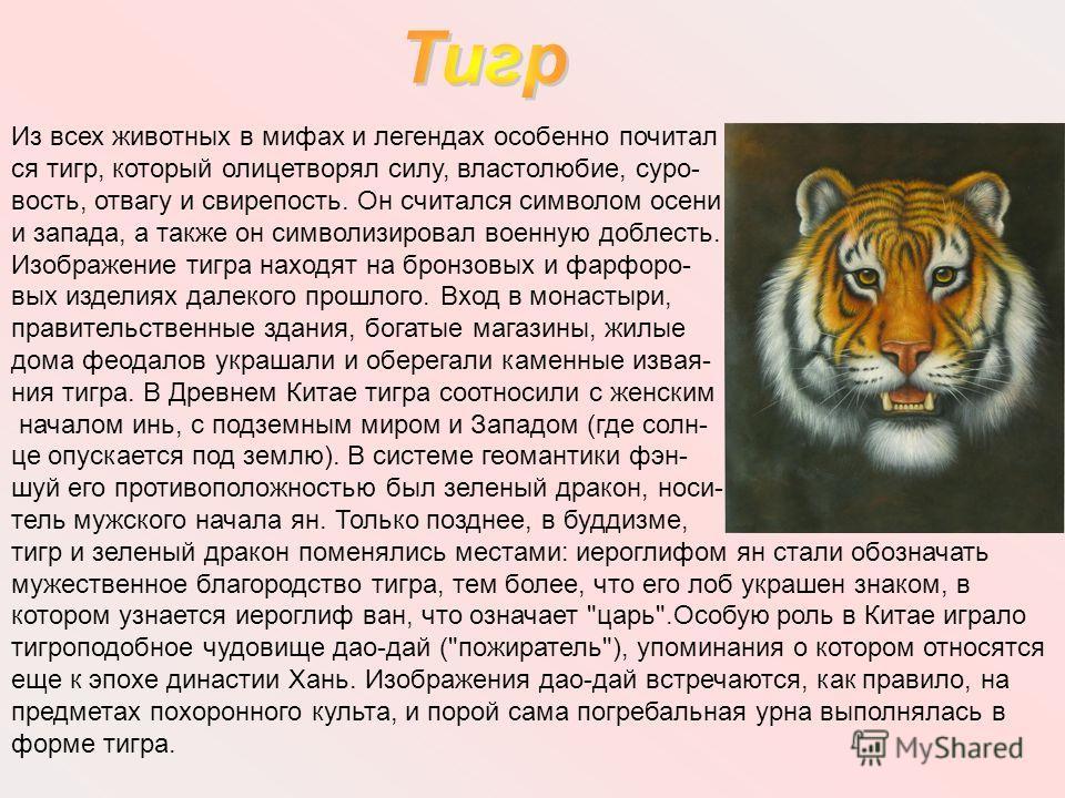Из всех животных в мифах и легендах особенно почитал ся тигр, который олицетворял силу, властолюбие, суро- вость, отвагу и свирепость. Он считался символом осени и запада, а также он символизировал военную доблесть. Изображение тигра находят на бронз