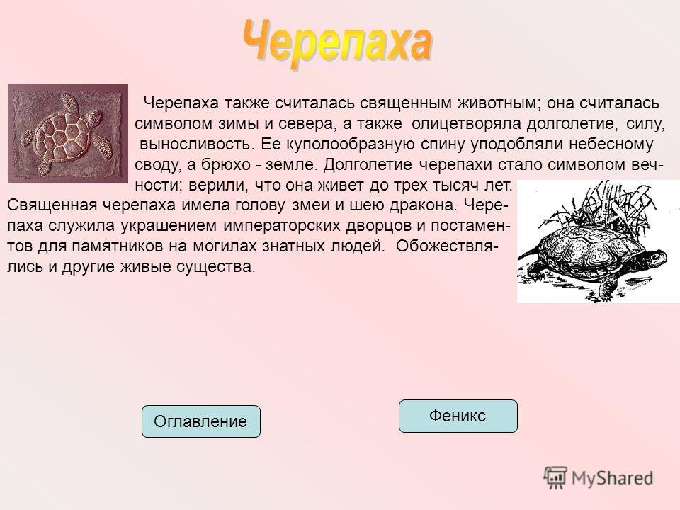 Черепаха также считалась священным животным; она считалась символом зимы и севера, а также олицетворяла долголетие, силу, выносливость. Ее куполообразную спину уподобляли небесному своду, а брюхо - земле. Долголетие черепахи стало символом веч- ности