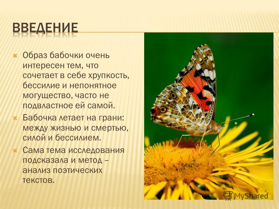 Образ бабочки очень интересен тем, что сочетает в себе хрупкость, бессилие и непонятное могущество, часто не подвластное ей самой. Бабочка летает на грани: между жизнью и смертью, силой и бессилием. Сама тема исследования подсказала и метод – анализ