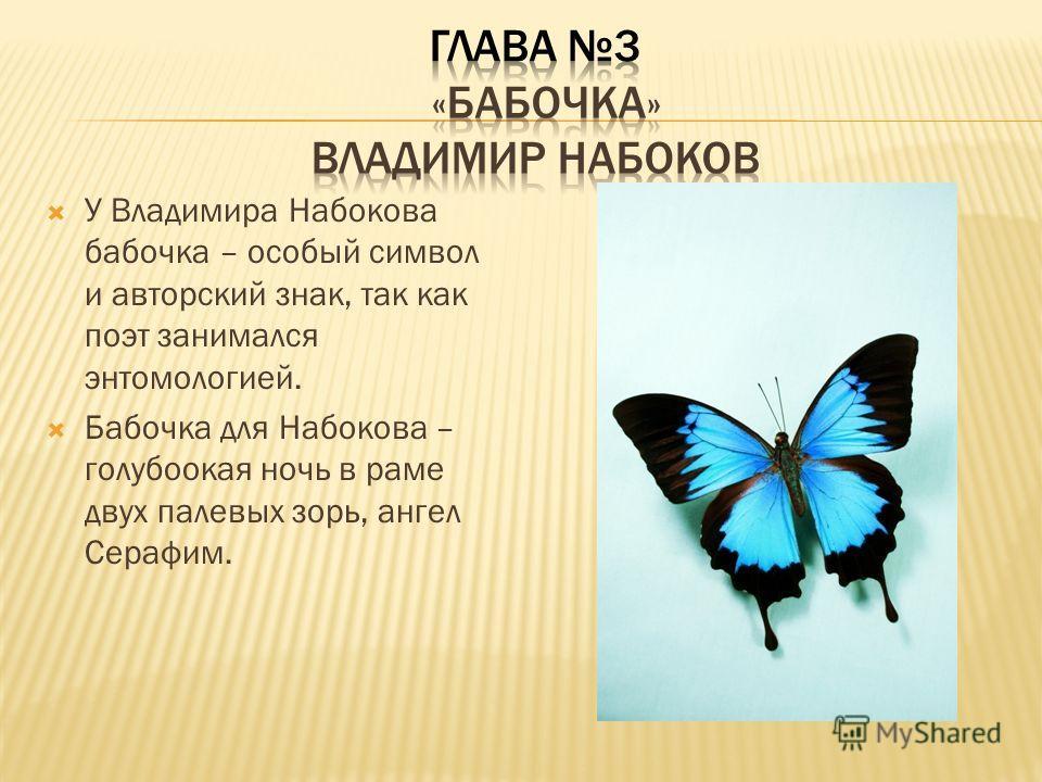 У Владимира Набокова бабочка – особый символ и авторский знак, так как поэт занимался энтомологией. Бабочка для Набокова – голубоокая ночь в раме двух палевых зорь, ангел Серафим.