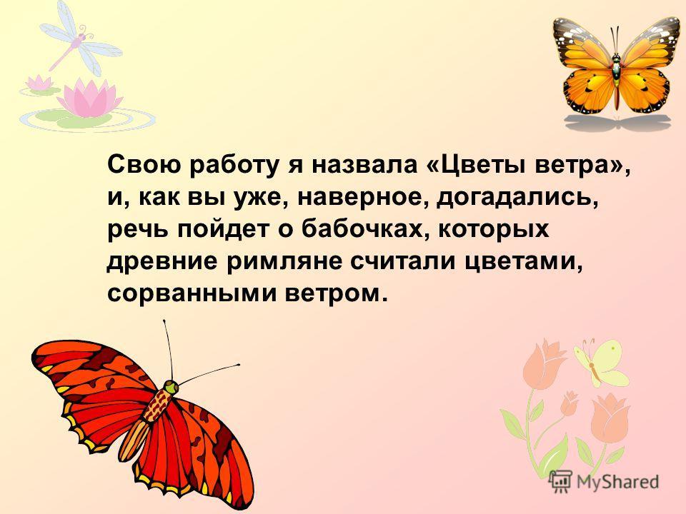 Свою работу я назвала «Цветы ветра», и, как вы уже, наверное, догадались, речь пойдет о бабочках, которых древние римляне считали цветами, сорванными ветром.