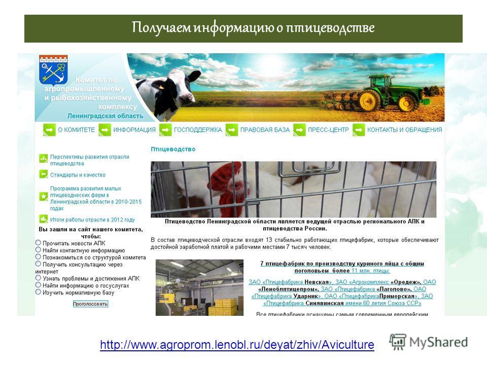 Получаем информацию о птицеводстве http://www.agroprom.lenobl.ru/deyat/zhiv/Aviculture