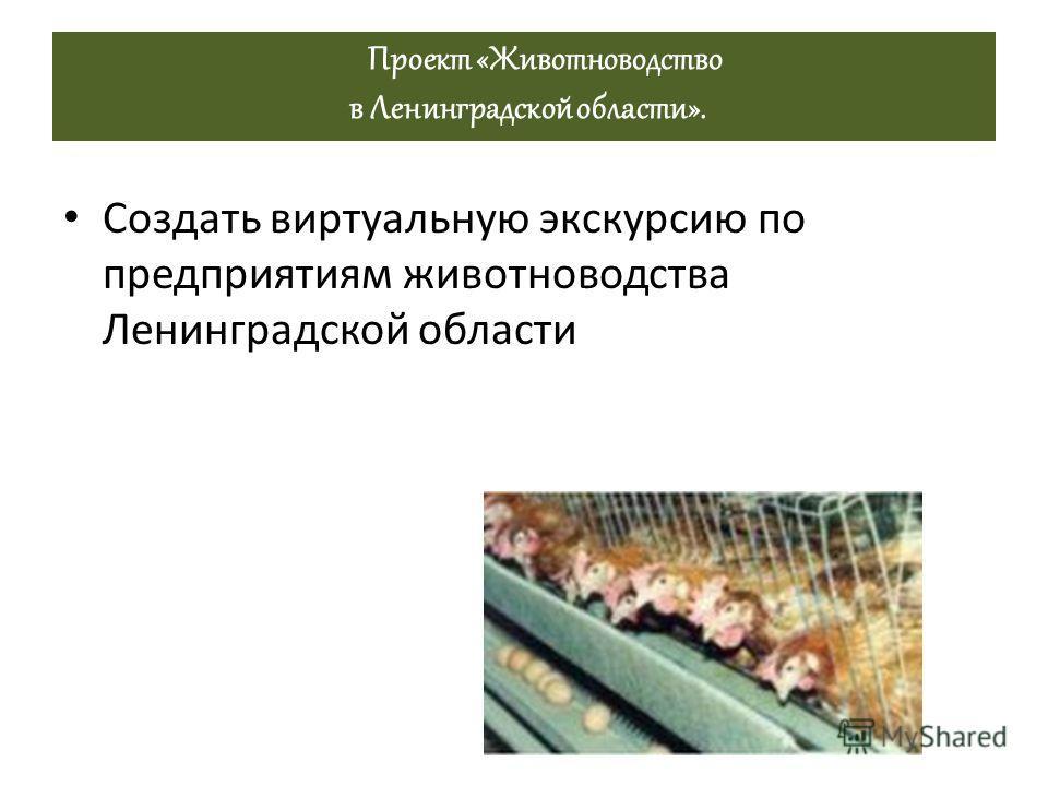 Проект «Животноводство в Ленинградской области». Создать виртуальную экскурсию по предприятиям животноводства Ленинградской области