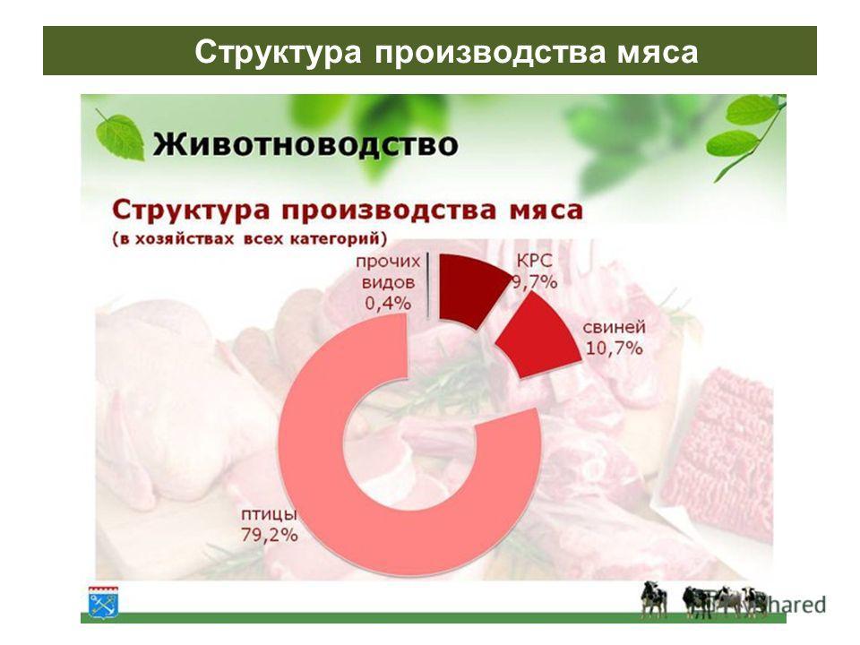 Структура производства мяса