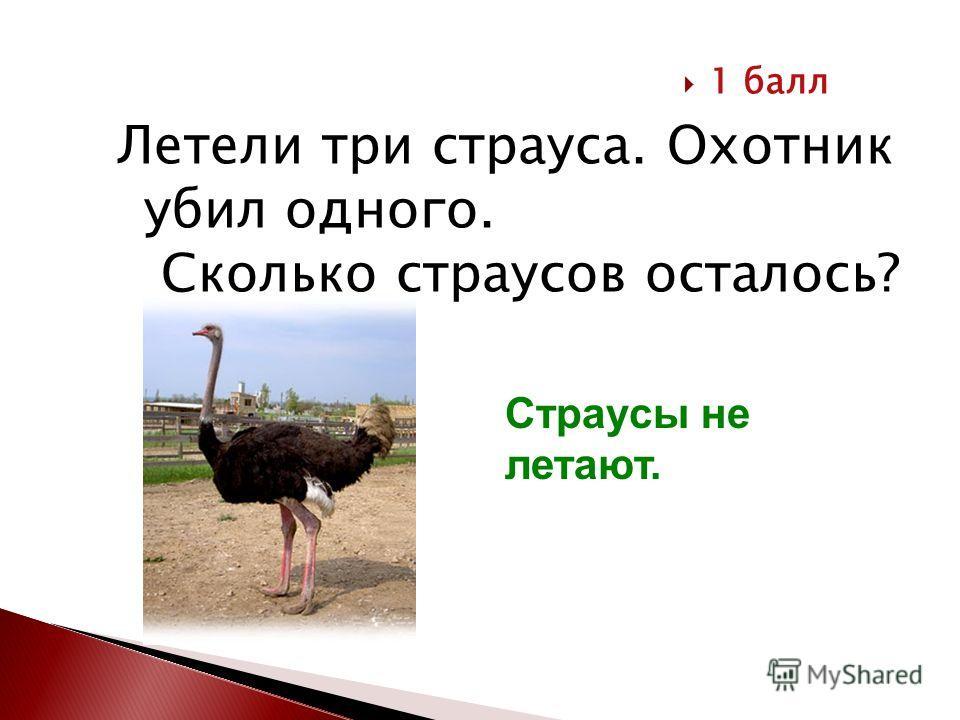 Летели три страуса. Охотник убил одного. Сколько страусов осталось? 1 балл Страусы не летают.