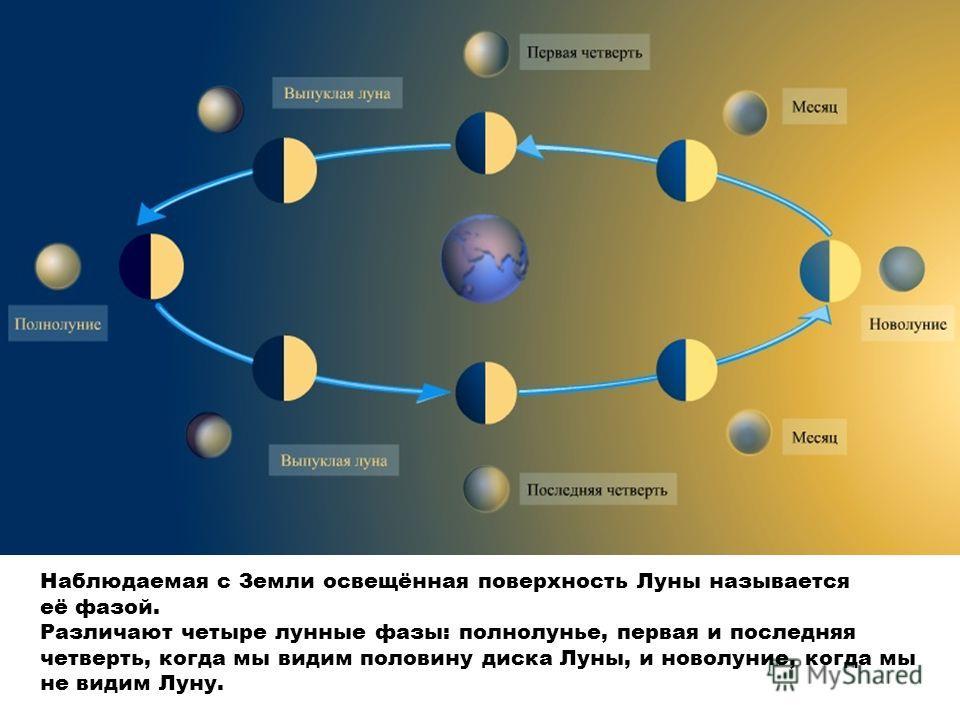 Наблюдаемая с Земли освещённая поверхность Луны называется её фазой. Различают четыре лунные фазы: полнолунье, первая и последняя четверть, когда мы видим половину диска Луны, и новолуние, когда мы не видим Луну.